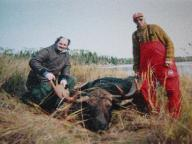 moose hunting in ontario canada (#1)