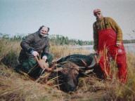 moose hunting in ontario canada (#1)
